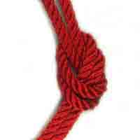 3 Strand Polyester rope RED
